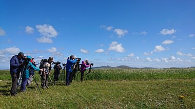 Birdwatching Holiday - Highlands and the Outer Hebrides