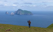 Birdwatching Holiday - St Kilda and the Hebrides